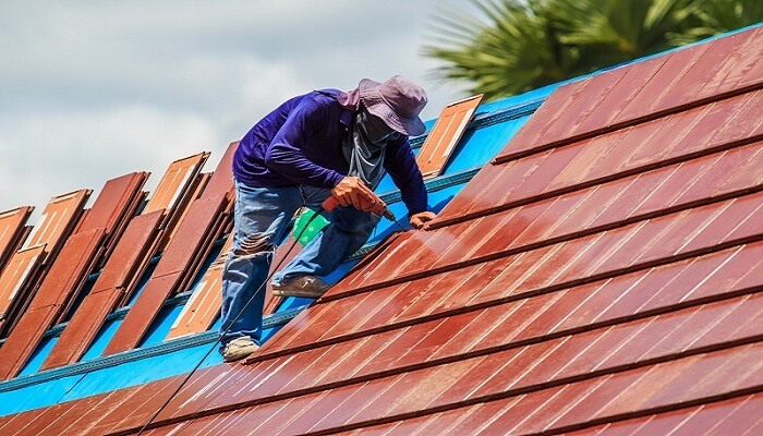 Are You Looking for Roof Restoration for Your Home?