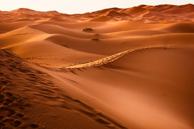Best Desert Safari in Dubai With Affordable Price