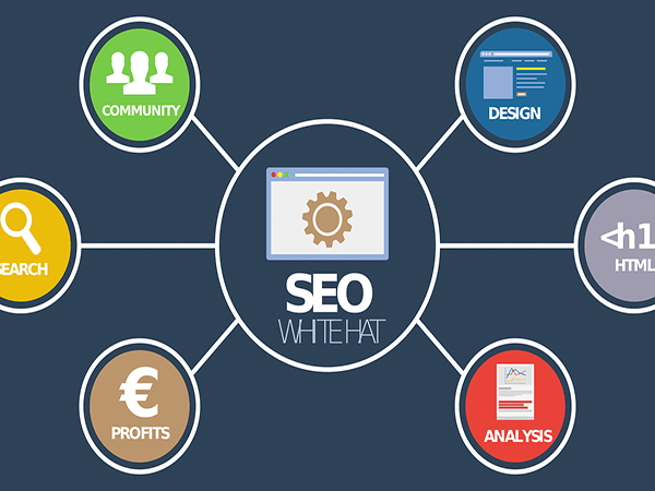 8 SEO Secrets That No One Wants to Reveal